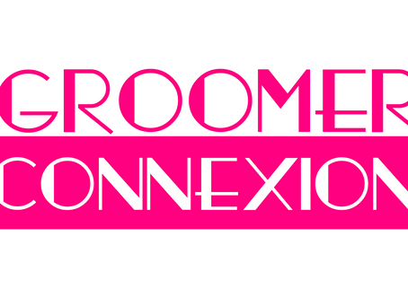 Groomer Connexion reaches 6000 readers and launches a new blog !!