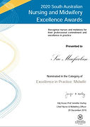 Nomination%20Excellence%20Award_edited.j