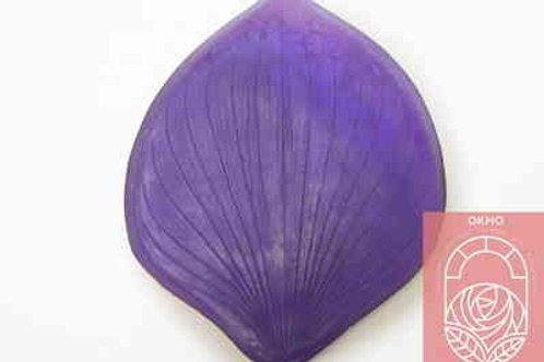 Молд лист каллы большой