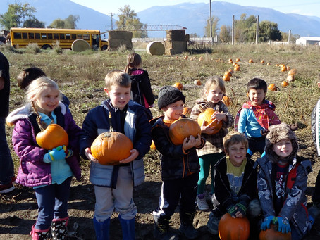 Primary Visit to the Pumpkin Patch