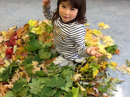 Autumn Colours with the Kindy Class