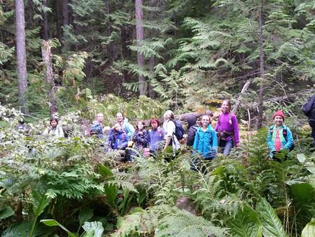 Hike to Balancing Rock and Holly (No)Waterfalls