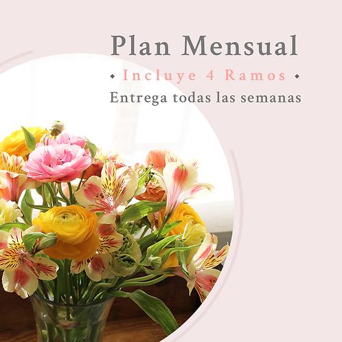 Plan Mensual- Mantención semanal