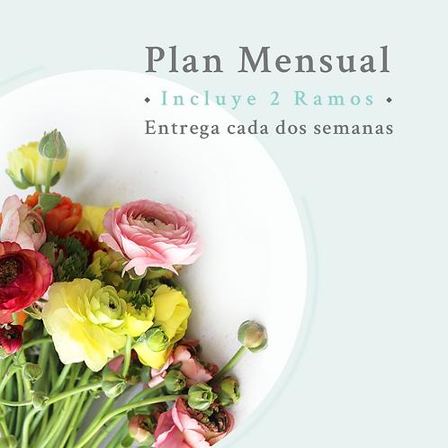 Plan Mensual- Mantención quincenal