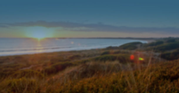 Coastal_Osteo5.jpg