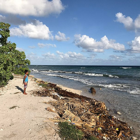 COVID-19, Climate Change and the Pacific Migration Challenge