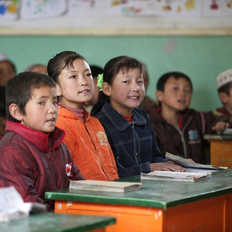 Bilingual education reform could become a double-edged sword for Chinese minorities and social unity