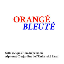 cover copie5.jpg