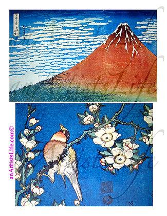 Nature Collage Sheet Digital Download