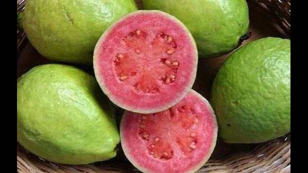 fresh Brazilian Guavas