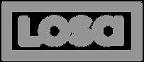 logo LOSA per sito 2.png