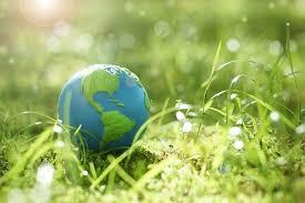 🌳🌻 Journée mondiale de l'Environnement 🌻🌳