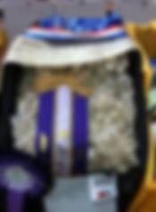 sunseeker fleece.JPG