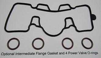optional PV gasket and orings.JPG