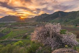 Valle de Arriba, un mirador privilegiado