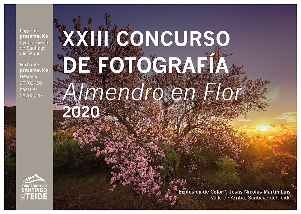 Concurso_Fotografia_Almendro_a5_Mesa de