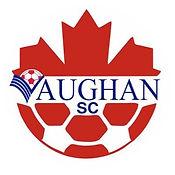VSC Logo.jpg