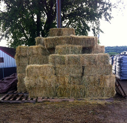 Hay and Straw Offered Seasonally