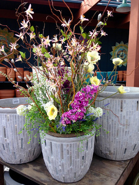 Spring Potted Arrangement