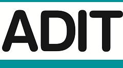 ADIT Logo (Pantone 320c).png