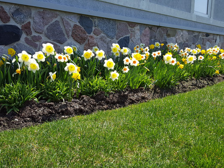 Get Ahead With Spring Maintenance