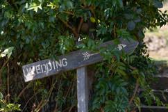 T&J Wedding 009.jpg