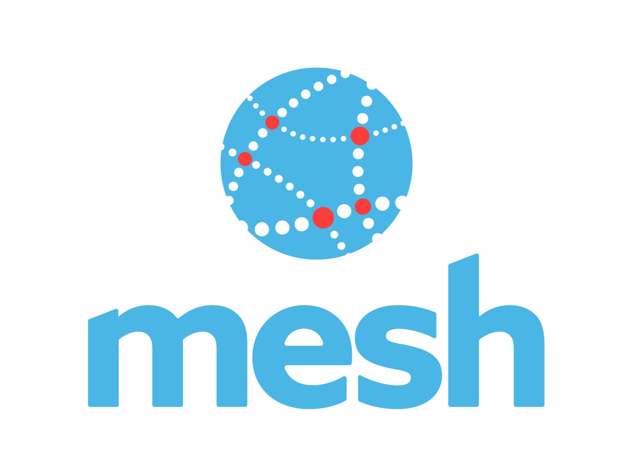 Mesh Capstone Project