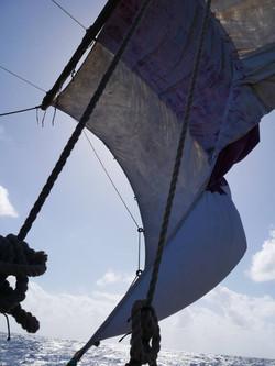 sail 161219