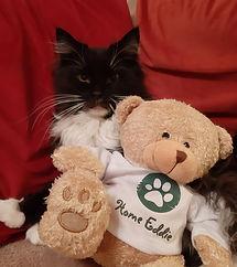 Teddy Photo5.jpg