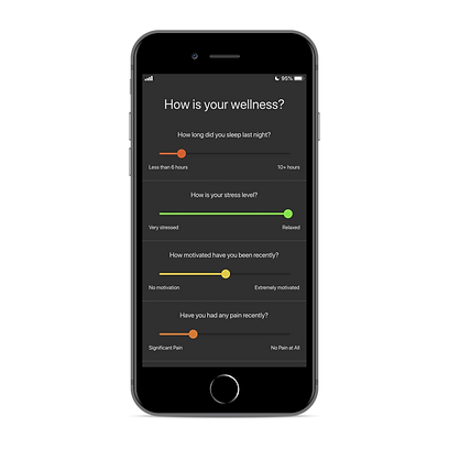 4. Wellness Survey_iphone8spacegrey_port