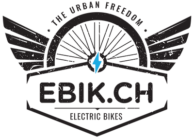 Ebik Logo Sticker final B.png