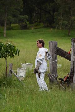 Holistic Hives beekeeper