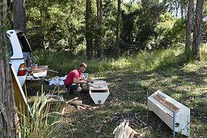 Andy preparing top bar boxes