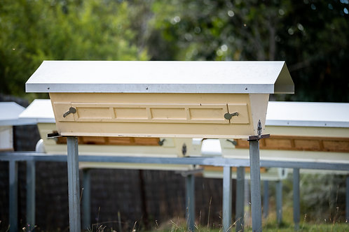 Top bar hive with bees