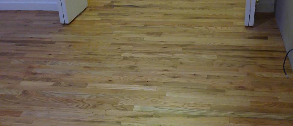 Refinished Hardwood Floor