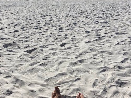 01/10/2020 - Grayton Beach State Park: White Sands, Warm Toes
