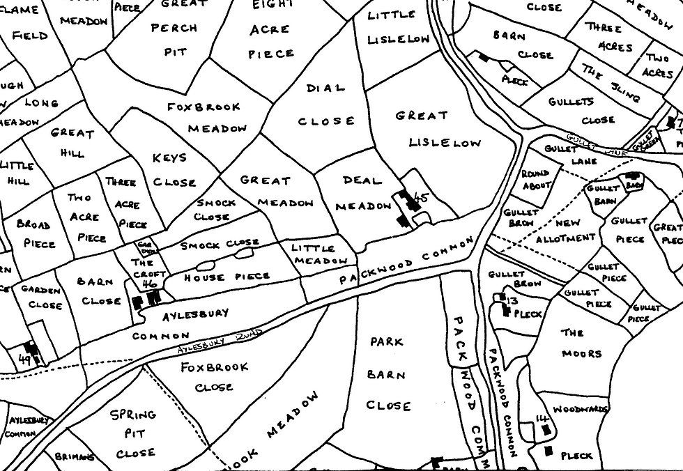 1841 Part Tithe map Broadacre (2).jpg