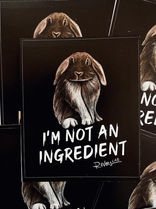 NOT AN INGREDIENT! sticker