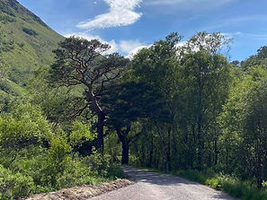 Cycle to Steall falls
