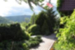Widok na Homolę - Rodzinny Ogród Mazurówka