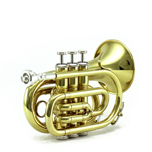 Sky Band Approved Gold Lacquer Brass Bb Pocket Trumpet with Case and More