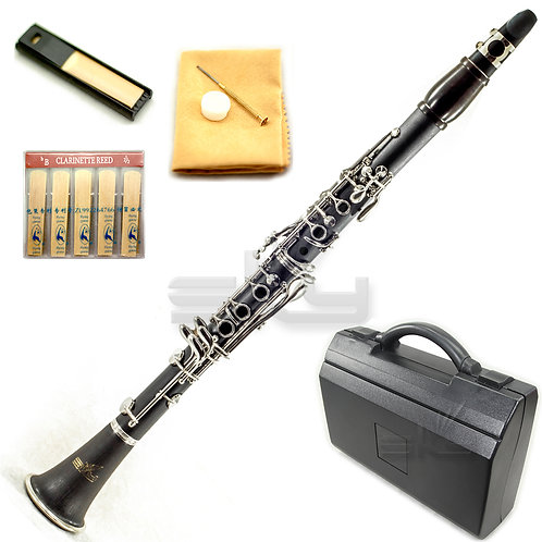 SKY BLACK ABS Bb Clarinet with Case, Mouthpiece, 11 Reeds, Care kit and