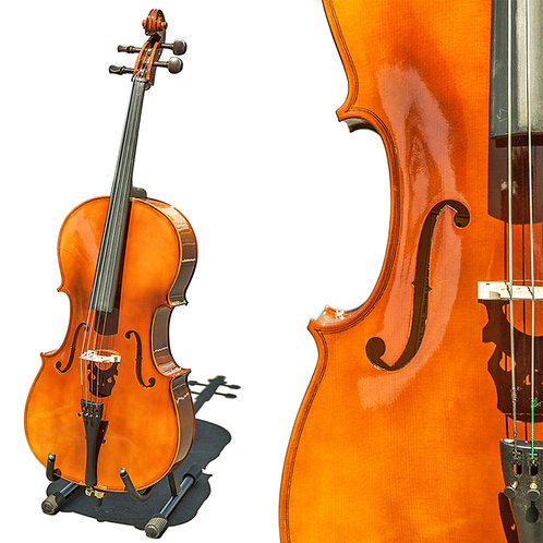 Paititi CE4009SE AVANT-GARDE Ebony Fitted Glossy Finish Solid Wood Cello
