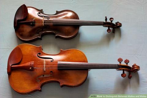 7 Steps to Distinguish Between Violas and Violins