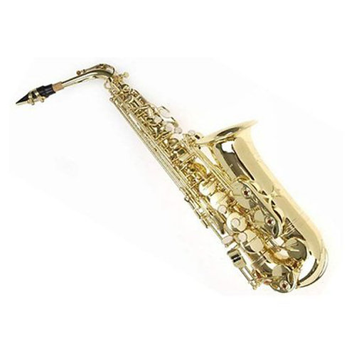 Sky E Flat Lacquer Alto Saxophone F# Key with Case Mouthpiece and 10 Reeds