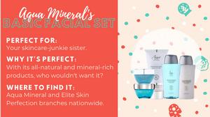 Aqua Mineral Basic Face Set