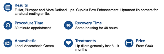 Lip Filler Treatment Summary.png