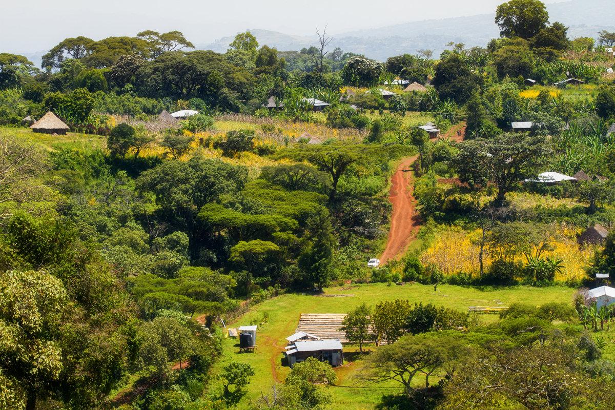 aethiopien-waldgarten-coffeecircle