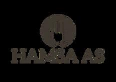 Logo gjennomsiktig bakgrunn.png