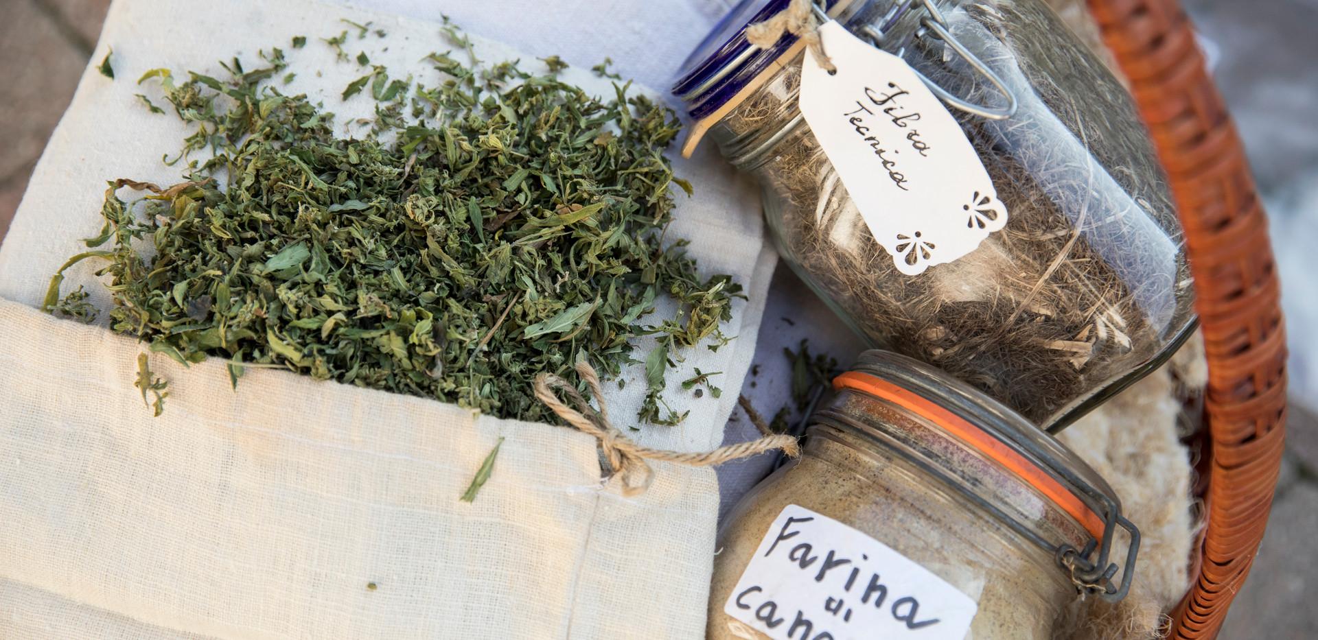 Fibra e farina di Canapa